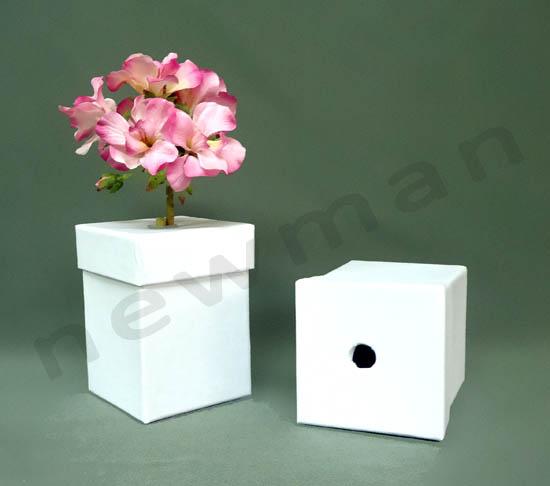DSC03176 flower box copy