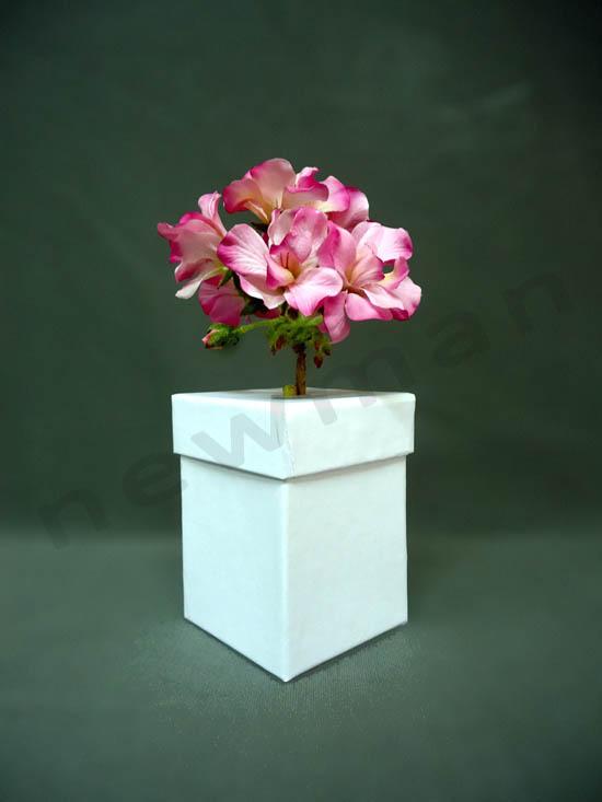 DSC03179 flower box copy