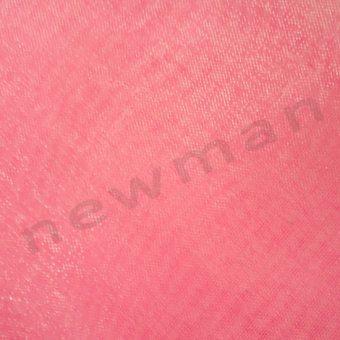 DSC03245 velo 13x13 stroggylo 231840 roz copy