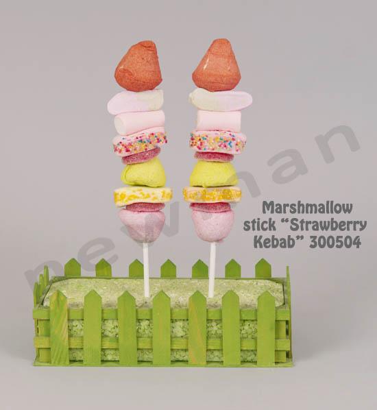 _DSC4343 marshmallow strawberry kebab 300504 copy