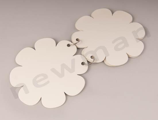 _DSC7643 613066  blank album mini flower copy