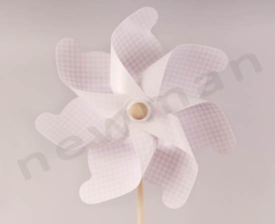 _DSC7668 anemomylos 60cm 350089 roz copy