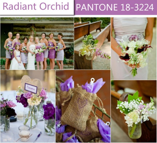 radiant orchid 01