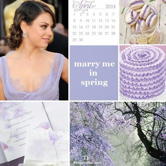 violet tulip 013