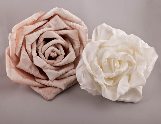 Τριαντάφυλλα 2 μεγέθη