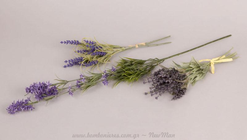 Διακοσμητικά άνθη λεβάντας