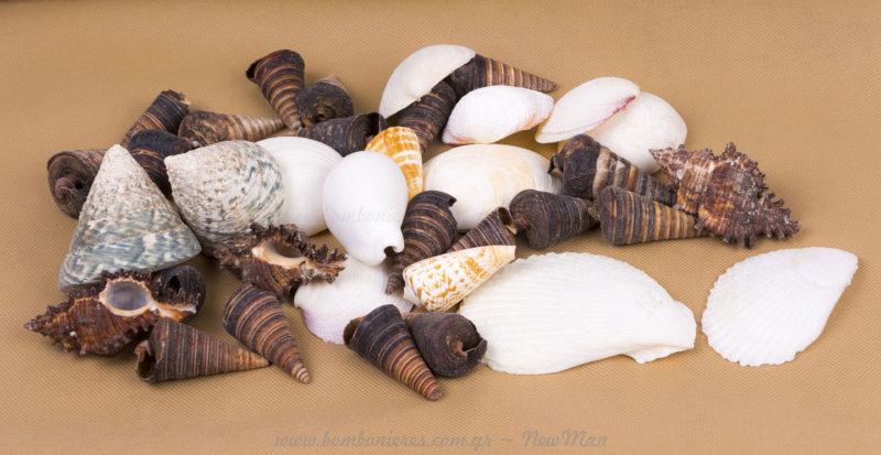 Axinos kai Axinosalata - hkoinoniamas.blogspot.com