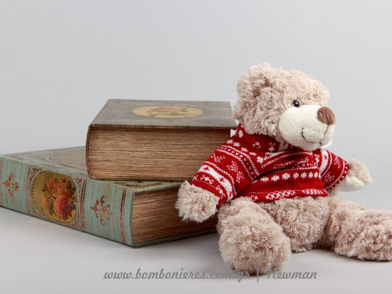 Λούτρινο αρκουδάκι και κουτιά σε σχήμα βιβλίο