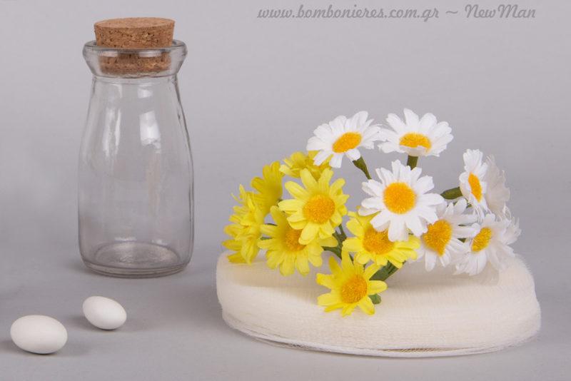 Λευκή μικρή μαργαρίτα ματσάκι και κίτρινη μικρή μαργαρίτα ματσάκι. Διατίθενται ξεχωριστά σε συσκευασία των 8 τεμαχίων ή σε ματς των 12.