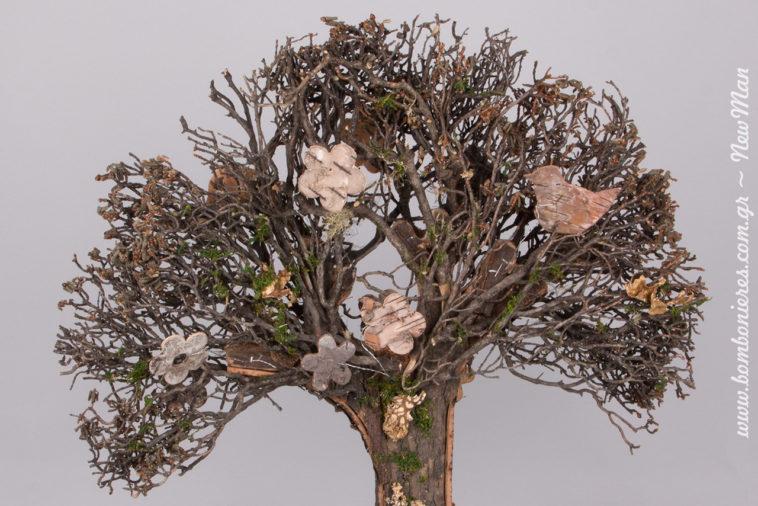 Στα κλαδιά του έχουν φωλιάσει μικρά πουλάκια και υπέροχες μαργαριτούλες, μεταμορφώνοντας το σε ένα πραγματικό έργο τέχνης.